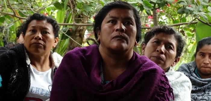 Marco Zero acompanha intercâmbio de agricultores na América Central
