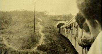 trem-1vert