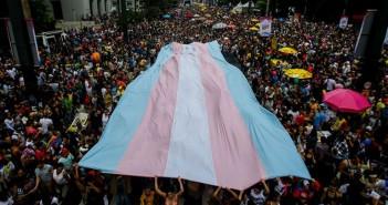 Bandeira trans. Crédito: Observatório do Terceiro Setor
