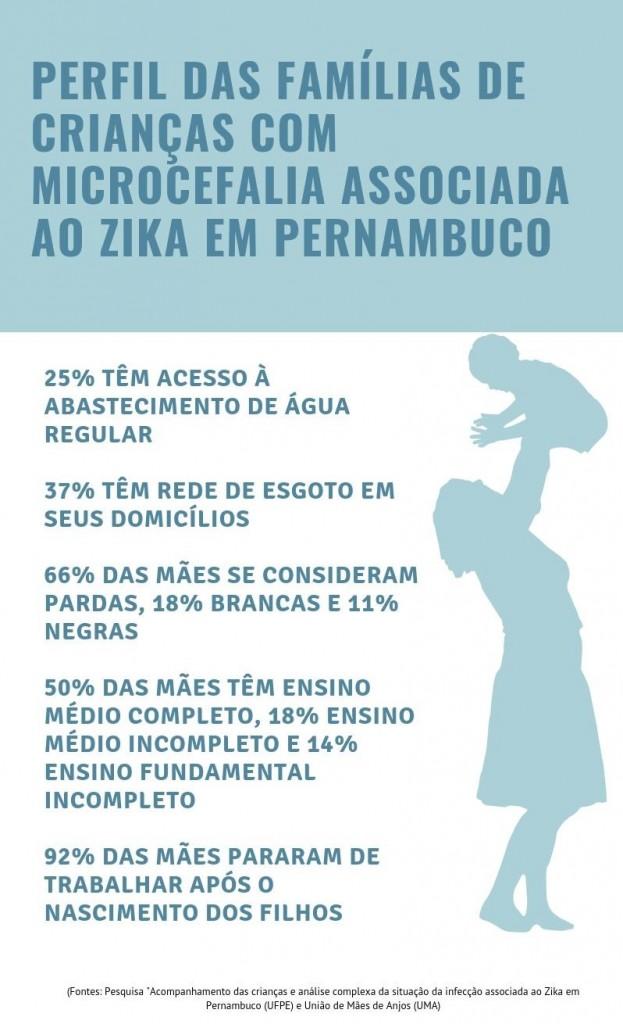 Perfil das famílias de crianças com microcefalia associada ao Zika em Pernambuco