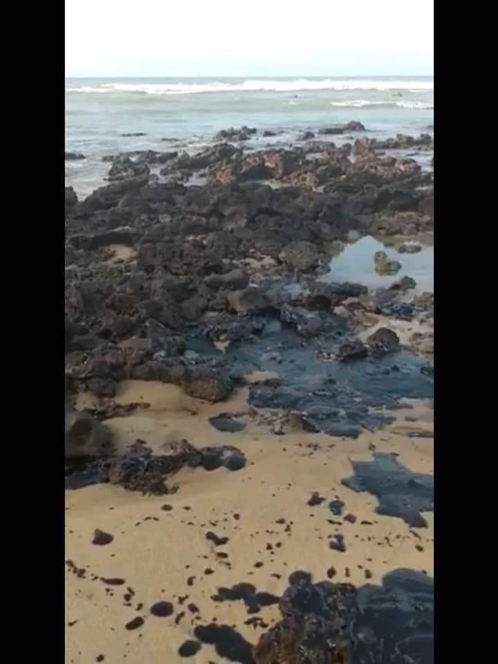 Piche em meio às pedras na Praia da Pipa