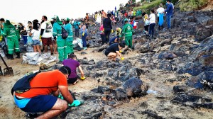 Praia de Itapuama, no Cabo de Santo Agostinho, em 21/10/2019. Sem o Plano Nacional de Contenção, centenas de voluntários recolhem material. Crédito: Inês Campelo/MZ Conteúdo