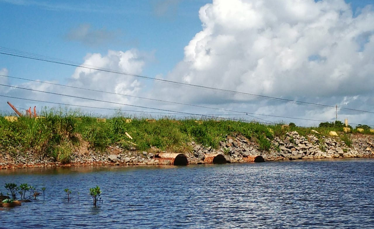 Suape canal de mangue fechado pelo porto